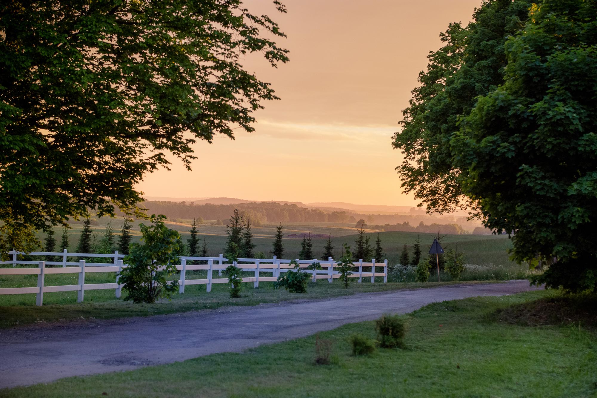 Krajobraz przy Pałacu w Pacółtowie